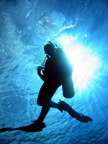 Scuba-Diver-495