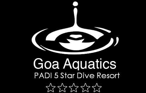 PADI Open Water Diver - Scuba Diving in Goa